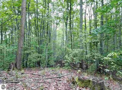 Benzie County Residential Lots & Land For Sale: 60 Acres Stanton Road