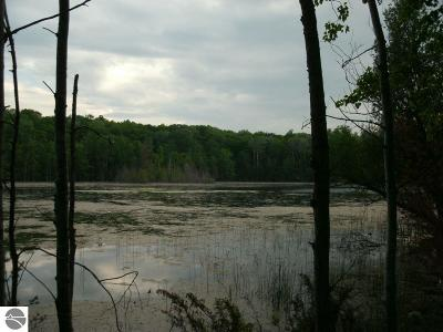 Benzie County Residential Lots & Land For Sale: Gray Heirs Lane
