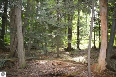 Grand Traverse County Residential Lots & Land For Sale: 4103 White Birch