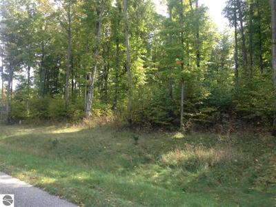 Grand Traverse County Residential Lots & Land For Sale: 5198 Timber Point Trail