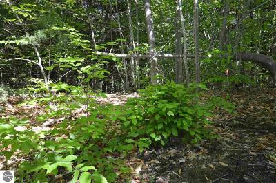 Leelanau County Residential Lots & Land New: A-1 E Harbor Highway