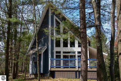 Traverse City Single Family Home For Sale: 176 Island View Drive