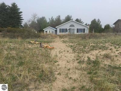 Iosco County Single Family Home For Sale: 1896 Ausable Point Road