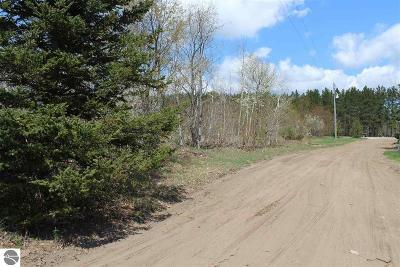 Kalkaska County Residential Lots & Land For Sale: 7888 Saddle Ridge Farms