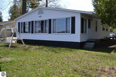 Greenbush Single Family Home For Sale: 4141 S Buena Vista
