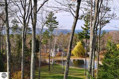 Leelanau County Condo For Sale: 29a Brook Hill