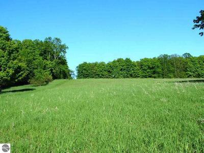 Central Lake MI Residential Lots & Land For Sale: $649,000
