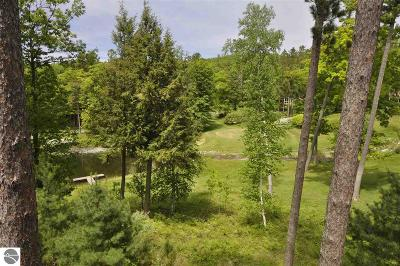 Leelanau County Condo For Sale: 27a Brook Hill