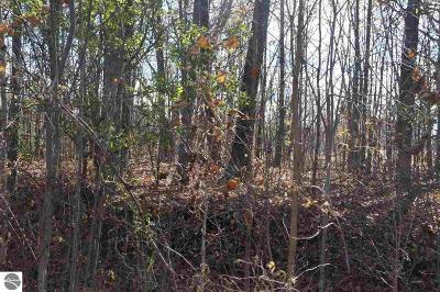 Mt Pleasant Residential Lots & Land For Sale: 8000 Chippewa Trail