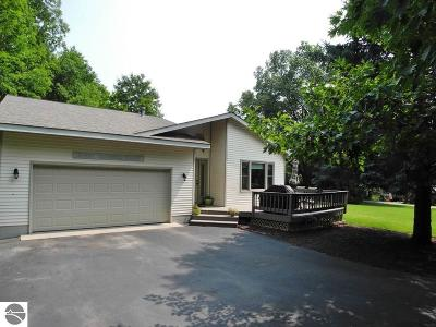 Traverse City Single Family Home For Sale: 10669 S Dalzell Road