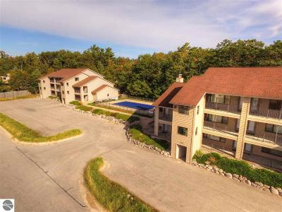 Elk Rapids MI Condo For Sale: $154,900