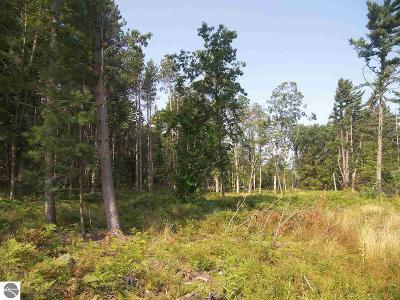 Leelanau County Residential Lots & Land For Sale: S Glen Lake Road