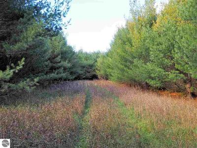Kalkaska County Residential Lots & Land For Sale: 10527 SE Four Point Road