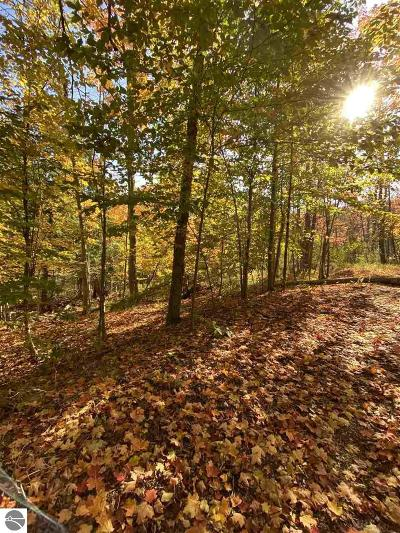 Grand Traverse County Residential Lots & Land New: 4925 Outer Drive