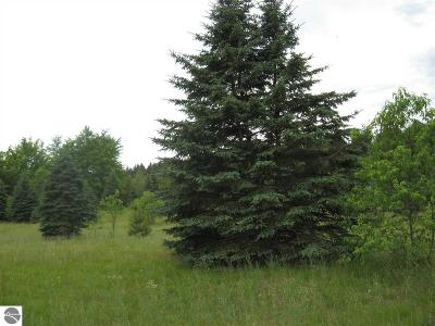 Kalkaska County Residential Lots & Land For Sale: SW Farm Lane