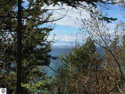 Leelanau County Residential Lots & Land For Sale: 12063 N Foxview Drive