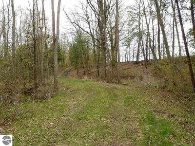 Mt Pleasant Residential Lots & Land For Sale: S Loomis Road
