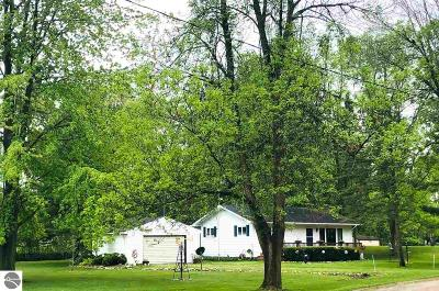 Clare Single Family Home For Sale: 1390 Lakeview Drive