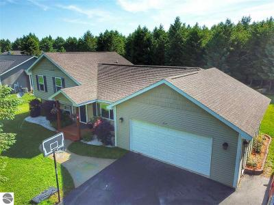 Traverse City Single Family Home For Sale: 855 Francis Drive