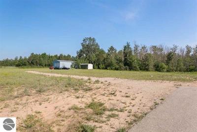 Kalkaska County Commercial New: 114 SW M-66