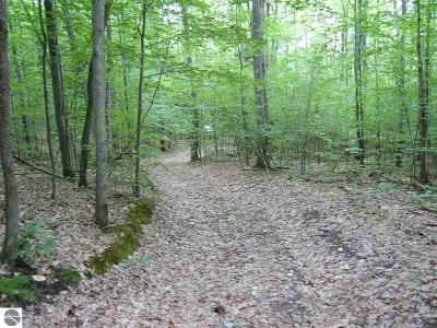 Leelanau County Residential Lots & Land For Sale: S Bohemian Road