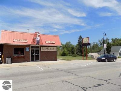 Leelanau County Commercial For Sale: 8974 S Kasson Street