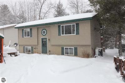 Grand Traverse County Single Family Home For Sale: 9738 9th Street
