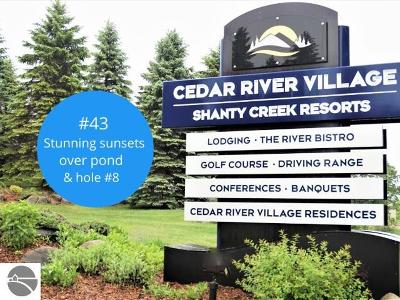 Cedar River Village, Chief Golf Cottages, Chief Golf Course, Cortina, Crosswinds, Crosswinds Condo, Eagles Nest, East Pointe, Eastpointe, Golf Meadows, Golf Meadows Condo-Shanty Crk, Golf Meadows Condominium, Greenside, Grindelhaus, Grindelhaus At Schuss Mt, Hawk's Eye, Hawk's Eye Clubhouse, Hawk's Eye Gc Condo, Hawk's Eye Golf Club, Hawk's Eye Golf Condominium, Hawks Eye, Hawks Eye Country Club, Hawks Eye Golf, Hawks Eye Golf Club, Hawks Eye Golf Club Condo, Hawks Eye Golf Community, Hawks Eye Golf Course, Hawkseye Golf Club, Klaffendorf, Legend, Legend Cottages Condominium, Near Chief Golf Course, North Grindel Haus, North Grindlehaus, North Heideldorf, North Schuss Village, Obervalden/Schuss Mountain, Pinebrook Condominium, Pinebrook Ii Condo, Points West, Points West Ii, Ridges Iii, Ridgewalk, Sawtooth, Schuss Mountain, Schuss Mountain-Obervalden, Schuss Mtn Resort, Shanty Creek Bluffs, Shanty Creek Resort, Shanty Creek-Schuss Mtn, Slopeside Condominiums, Snowshoe, Spring Ridge, Spring Ridge Condominium, Sprng Ridge, Sudendorf 2, Summit, Summit Village, Swiss Village, Swiss Village East, Swiss Village East 2, The Chief Golf Course, The Legend, The Legend Condominium, The Northern, The Northern Condominium, Timber Ridge, Toy Box, Trappers, Trappers Lodge, Trappers Lodge - Slopeside, Trappers Lodge Condominium, Vista Del Verde, Westwind Condominium, Wind Ridge, Windy Hill, Bergrand, Boise De Golfe, Cortina, La Villa Arboreal, Le Villa, Le Villa Arboreal, Levilla, Levilla Arboreal, North Grindelhaus, Obervalden, Schuss Village, Shanty Creek Resort, Villa Monte Residential Lots & Land For Sale: 43 Troon South