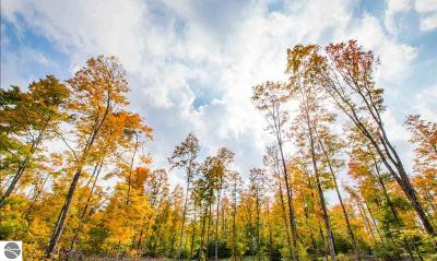 Charlevoix County Residential Lots & Land For Sale: White Avenue
