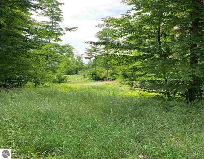Charlevoix County Residential Lots & Land For Sale: Lot 3 High