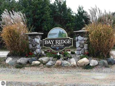Antrim County Residential Lots & Land For Sale: Lot 4 Bay Ridge Estates Drive