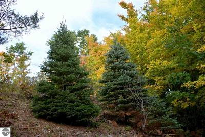 Grand Traverse County Residential Lots & Land New: 3918 Gaddi Drive