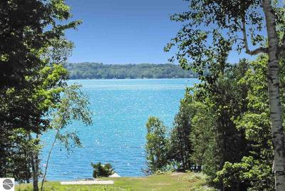 Single Family Home For Sale: 253 N East Torch Lake Drive