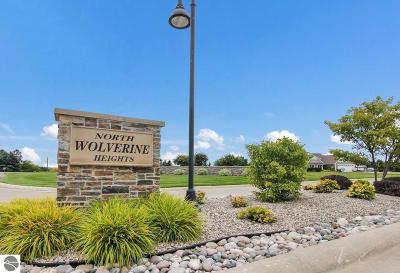 Golfview, The Shores, Cottage Glens, Golf Crest Condominium, Grand Traverse Golfview, Grand Traverse Hilltop Condo, Grand Traverse Resort & Spa, Grand Traverse Valleyview Cond, Hilltop Condominiums, Singletree I, The Shores, The Shores Condominiums, Wolverine Heights Residential Lots & Land For Sale: 7086 Wolverine View Drive