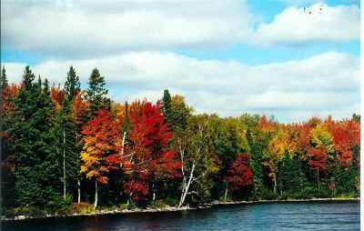 Michigamme Residential Lots & Land For Sale: Lot 31 Secluded Point Rd