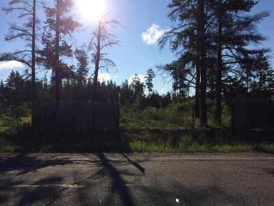 Ishpeming Residential Lots & Land For Sale: 34601 Co Rd 581