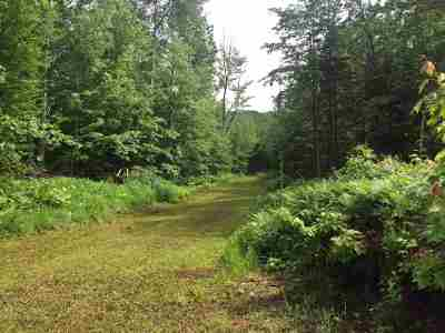 Negaunee Residential Lots & Land For Sale: Off Co Rd 480 #Parcel D