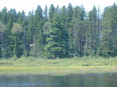 Ishpeming MI Residential Lots & Land For Sale: $39,100