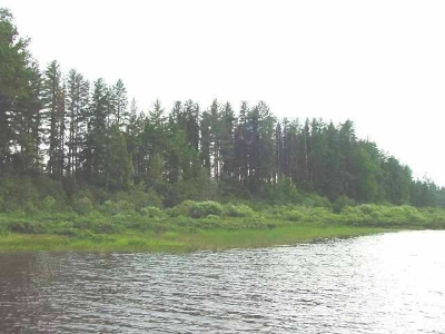 Ishpeming MI Residential Lots & Land For Sale: $74,500