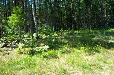 Gwinn Residential Lots & Land For Sale: 1020 N Co Rd Eeg (Cataract Dr)