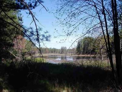 Marquette Residential Lots & Land For Sale: 119 W Gordon