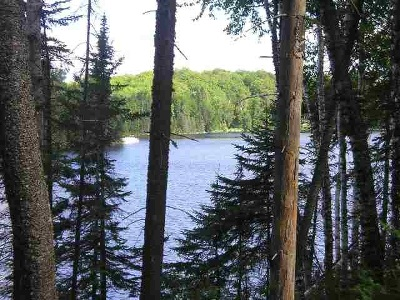Michigamme Residential Lots & Land For Sale: Lot 29 Secluded Point Rd #Lat 46.4