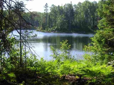 Michigamme Residential Lots & Land For Sale: Lot 45A N Fence Lake Dr #Lots 35