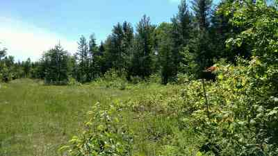 Negaunee MI Residential Lots & Land For Sale: $18,900