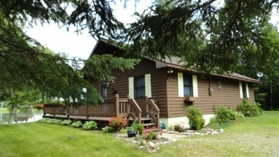 Munising Single Family Home For Sale: N3905 Blueberry Ln