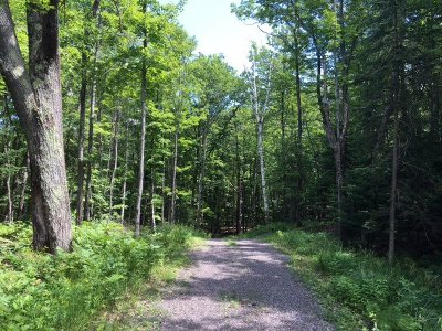 Negaunee Residential Lots & Land For Sale: 32 Co Rd 510