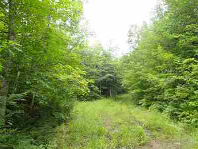 Marquette Residential Lots & Land For Sale: 320 Acre Off Co Rd 510