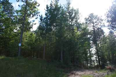 Residential Lots & Land For Sale: Lot #21 Forestville Basin Tr #Site Num