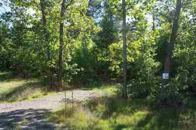 Residential Lots & Land Pending w/Contingency: Lot #22 Forestville Basin Tr #Site Num