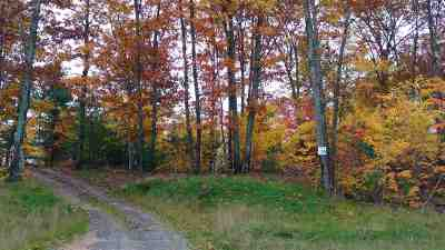 Residential Lots & Land For Sale: Lot #25 Forestville Basin Tr #Site Num